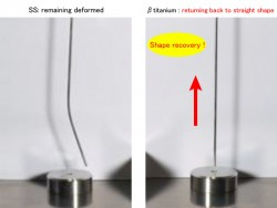 An Experimental Study on Vertical Load Resistance of βtitanium tubes and SS tubes